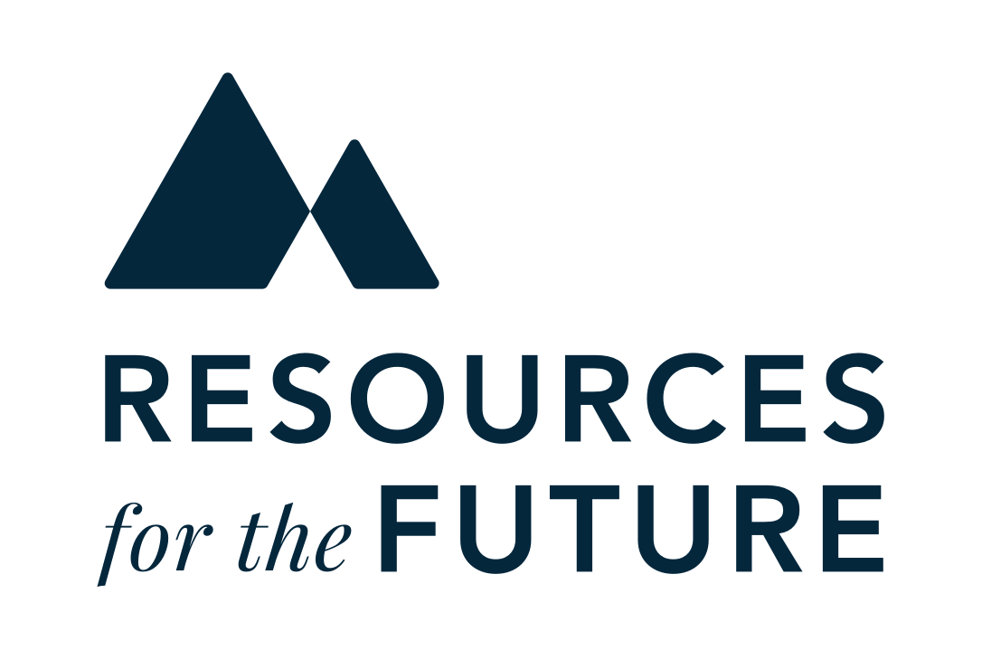 Bildresultat för resources for the future